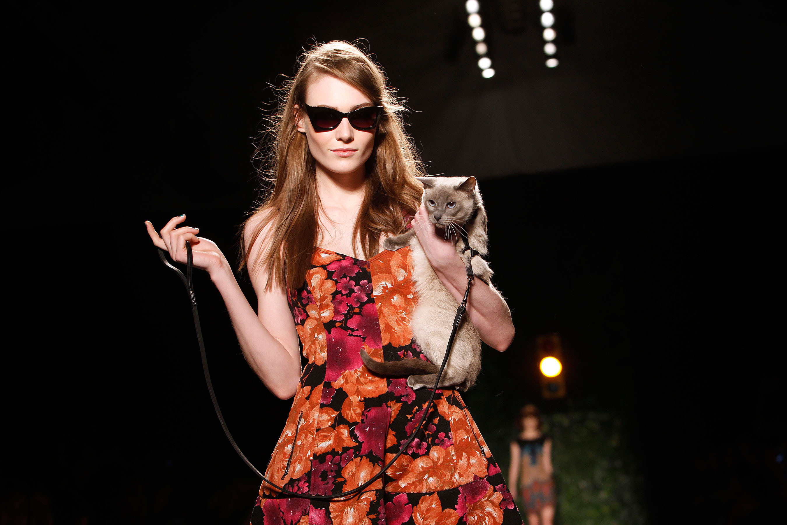 Purina ONE launches True Nature of Cats with a leash-trained cat at  New York Fashion Week.  (PRNewsFoto/Purina ONE)
