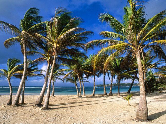 La Caravelle Beach, Guadeloupe