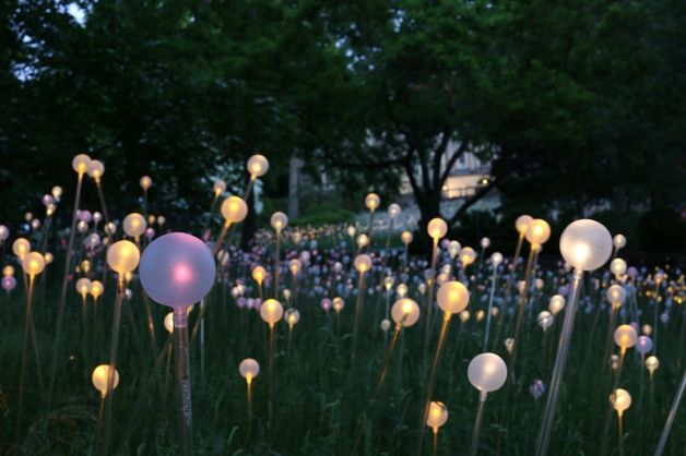 British Artist Bruce Munro to Exhibit Light-Based Works At Franklin Park Conservatory and Botanical Gardens