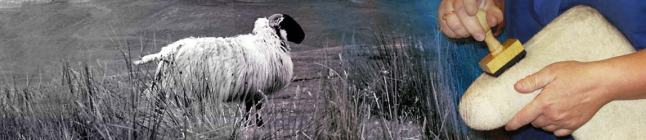 slovz craftmanship and material handmade from pure sheep wool