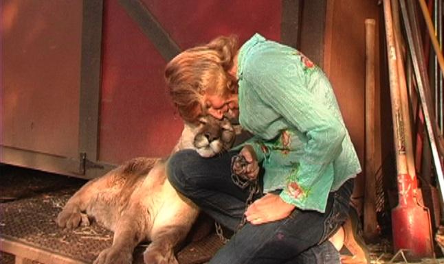 Dr. Conrad and the bobcat