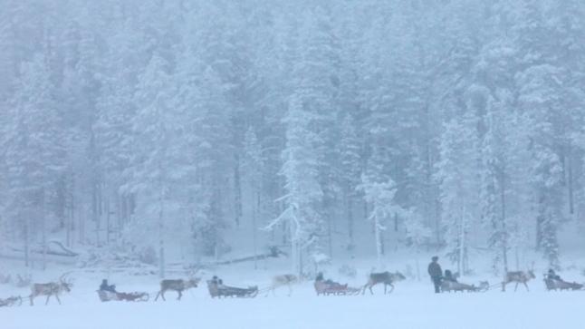 Jessica Oreck's Aatsinki: The Story of Artic Cowboys