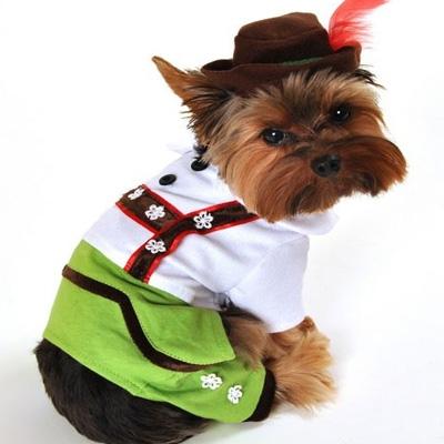 Alpine Boy Lederhosen Dog Costume