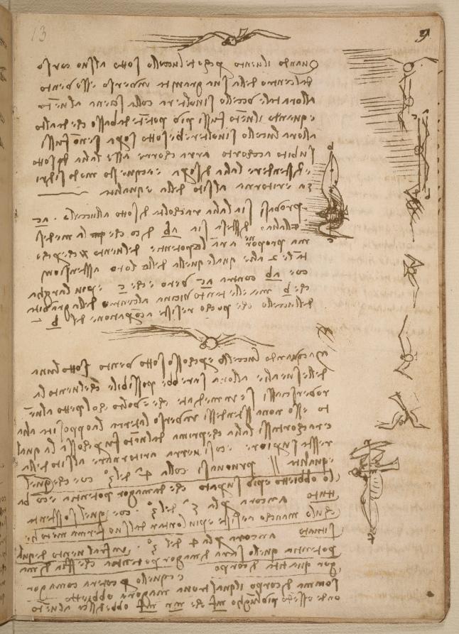 Leonardo da Vinci's Codex on the Flight of Birds