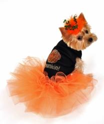 Li'l Pumpkin Dog Tutu Dress