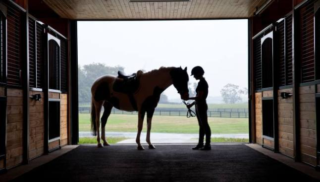 There is a full-service equestrian center and an array of programming that includes riding instruction and clinics from the area's world-class riders