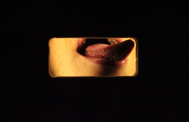 Luciana Brito Galeria, Fyodor Pavlov-Andreevich, My Mouth is a Temple, 2009, 3'51'', Courtesy the artist and the gallery