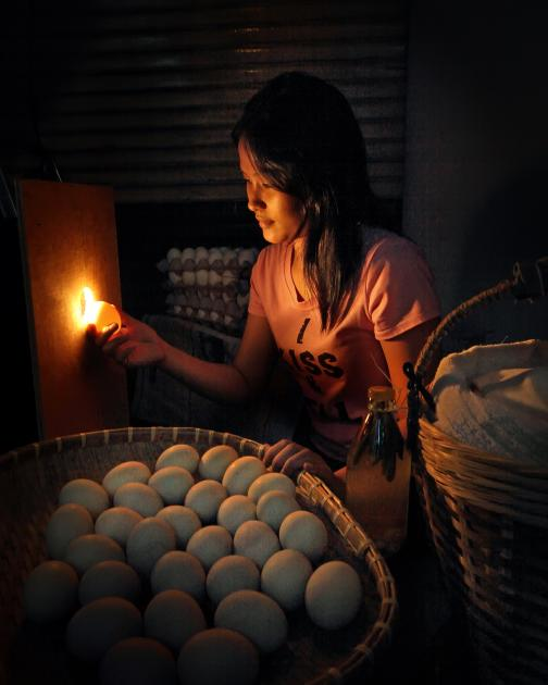 Eggs Vendor, The Philippines. This vendor sorts duck eggs that have been fertilized or are developing duck embryo to be cooked. The eggs are then used in popular foods that are sold as street food. Photo by Danilo Victoriano Jr.