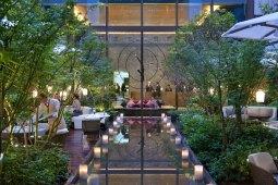 Lobby Garden
