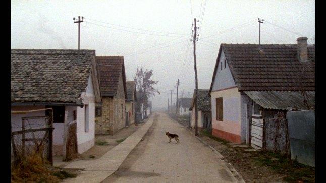 Karpotrotter (Karpopotnik), directed and written by Matjaž Ivanišin, co-written by Nebeojša Pop-Tasić. (Slovenia)  Remote village in Vojvodina.Photographer: Marko Brdar