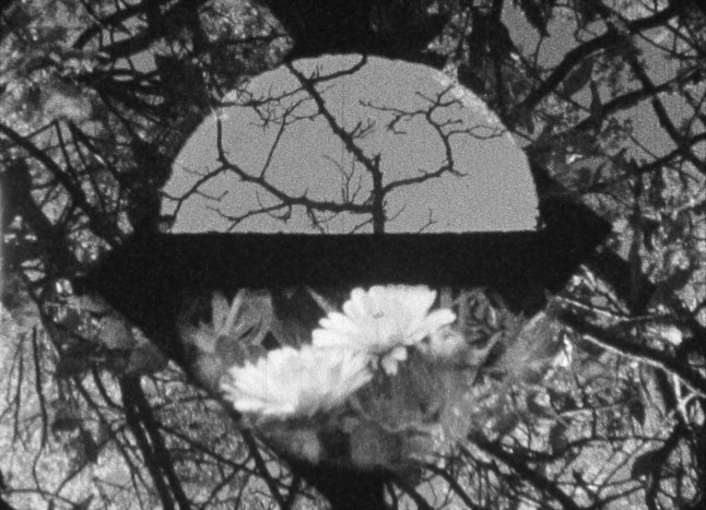 Film still from Resistfilm by Pablo Marin, 2014, to be shown as part of the series Selections from Oberhausen, New International Shorts, program one, on Saturday, January 3, at 2:00 p.m. National Gallery of Art, West Building Lecture Hall. Image courtesy the artist