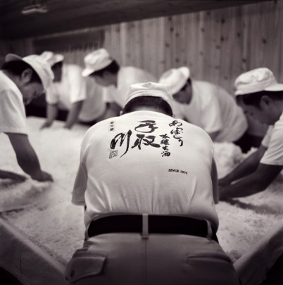 The workers of Tedorigawa Brewery. Workers age ranges from 19-70 years old. Photograph by Erik Shirai