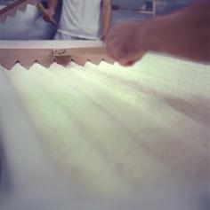 Koji process. Tedorigawa Brewery. Photograph by Erik Shirai