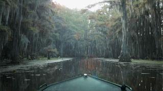 Caddo Lake, photo by Ewan McNicol