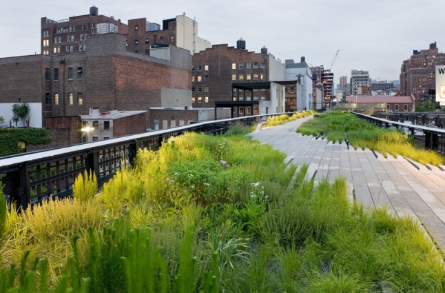 The High Line is New York City's newest and most unique public park. Located thirty feet above street level on a 1930s freight railway, the High Line runs from Gansevoort Street  in the Meatpacking District to 34th Street in Clinton/Hell's Kitchen. It features an integrated landscape combining meandering concrete pathways with naturalistic plantings.
