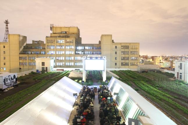 Rooftop Films Brooklyn Grange. Photo Credit: Irwin Seow