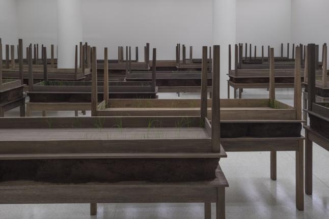 Installation view: Doris Salcedo, Solomon R. Guggenheim Museum, New York, June 26–October 12, 2015 (Photo: David Heald © The Solomon R. Guggenheim Foundation)