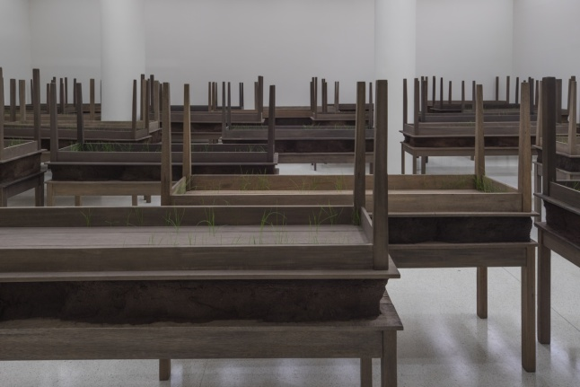 Installation view: Doris Salcedo, Solomon R. Guggenheim Museum, New York, June 26–October 12, 2015 (Photo: David Heald © The Solomon R. Guggenheim Foundation)
