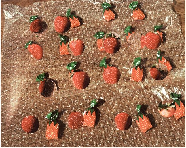 Lucas Blalock (American, born 1978). Strawberries (forever fresh). 2014. Pigmented inkjet print, 16 × 20″ (40.6 × 50.8 cm). Courtesy the artist and Ramiken Crucible, New York. ©2015 Lucas Blalock
