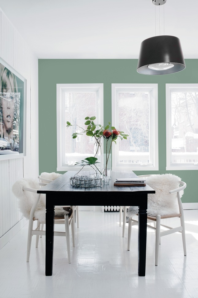 The 2016 Color of the Year, Paradise Found, is reminiscent of militia and natural environments and reflects our society's increasing focus on the development of personal strength, safety and security.