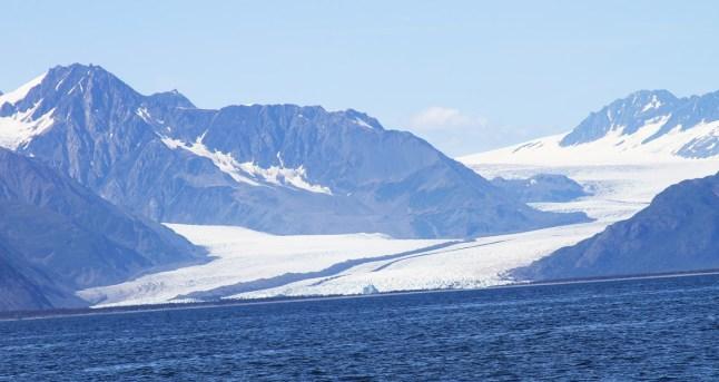 Bear Glacier Kenai Fjords