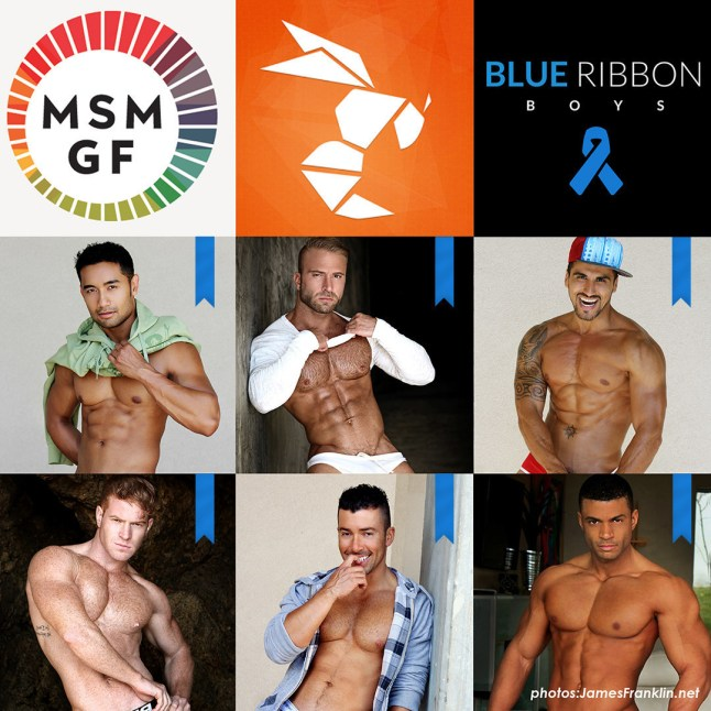 Find out more at BlueRibbonBoys.org (PRNewsFoto/MSMGF)