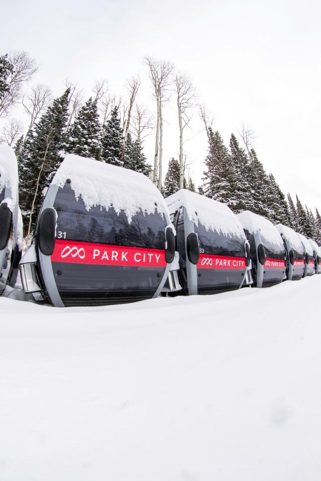 Quicksilver Gondola Cabins