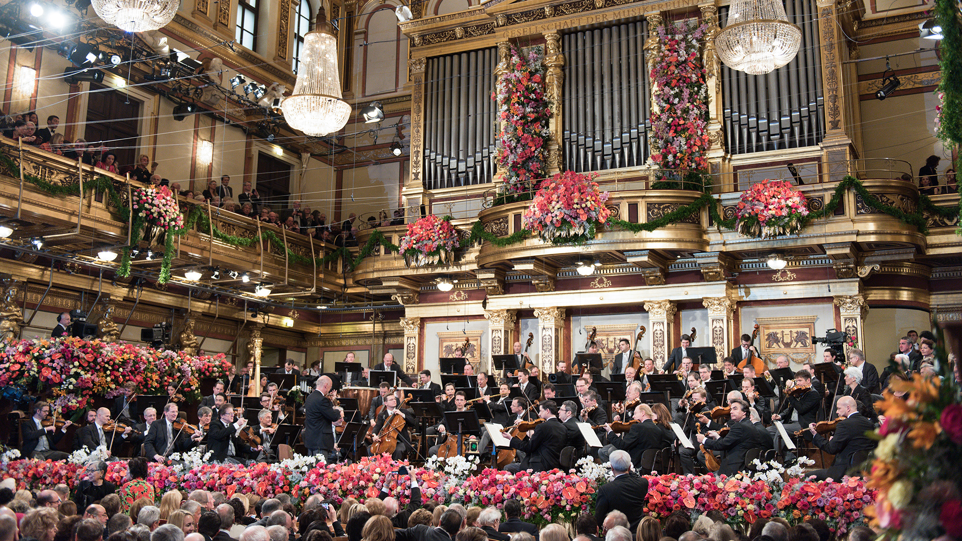 Vienna Philharmonic. Phot Credit: Terry Linke