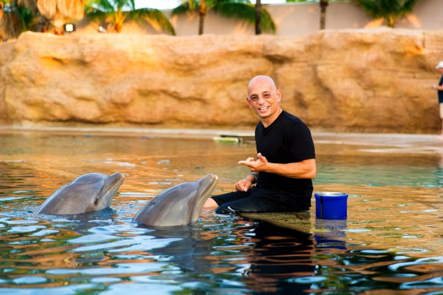 Host Anthony Melchiorri swims with dolphins in the Bahamas (PRNewsFoto/Travel Channel)