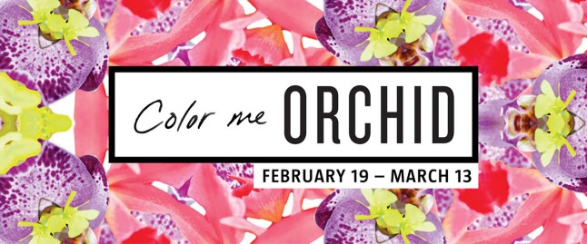 ColorMeOrchid-Homepage-Slider-web-1200x500