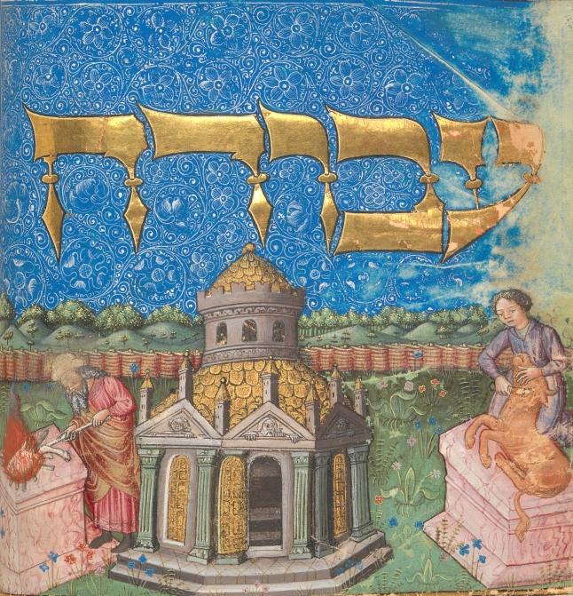 Mishneh Torah MMA detail-300