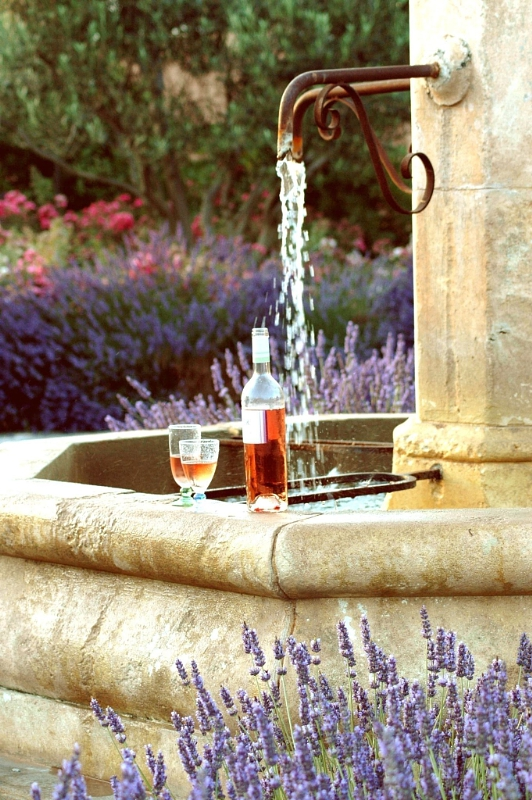 Wines of Provence