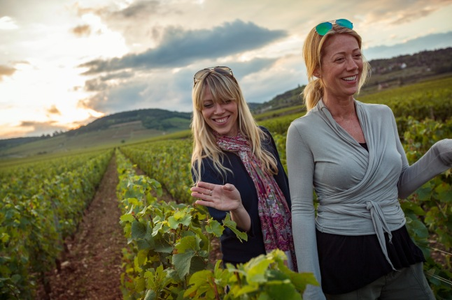 france-beaune-vineyard-sunset-travellers