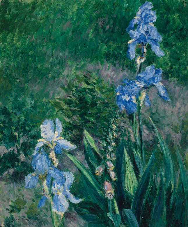 gustave-caillebotte-iris-bleus-jardin-du-petit-gennevilliers-est-600000-800000