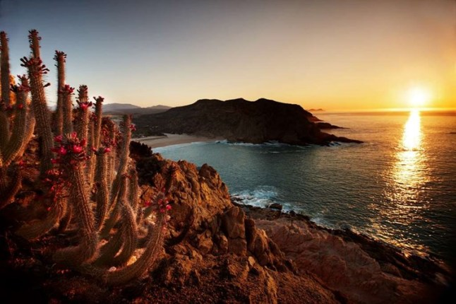 Montage Los Cabos, Mexico – Opening spring of 2018