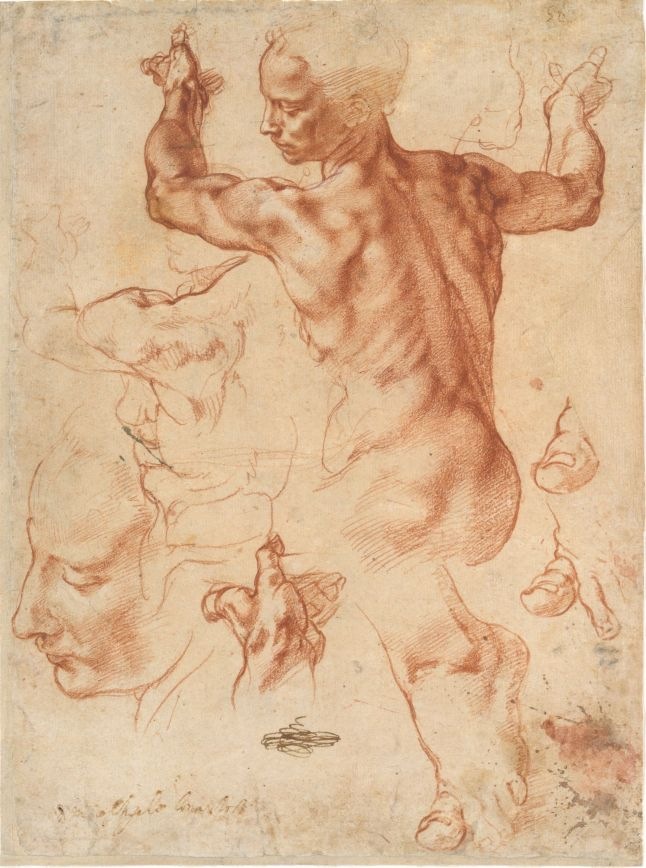 6. Michelangelo_Studies for the Libyan Sibyl_MMA