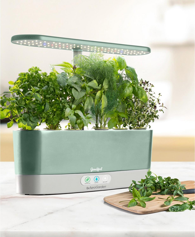 Goodful by AeroGarden Harvest Slim Countertop Garden & Gourmet Herbs Seed Kit